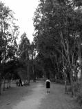 such a nice walk...